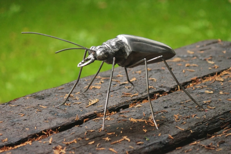 metalgnu_insects_35