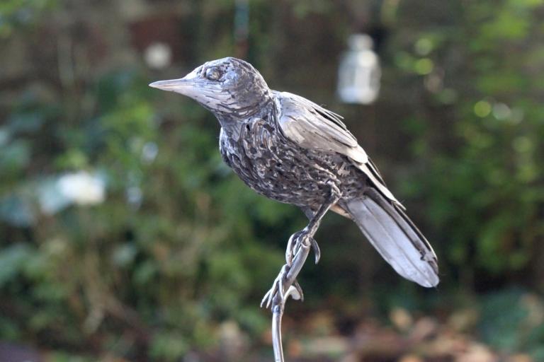 metalgnu_birds_104