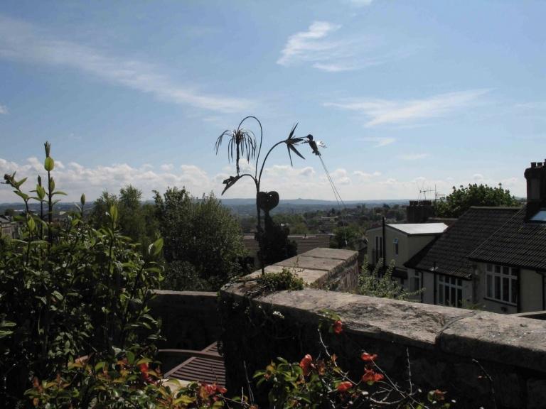 Hummingbird over Bristol.
