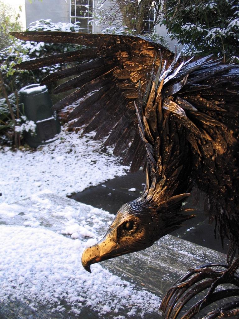 Griffin Vulture.