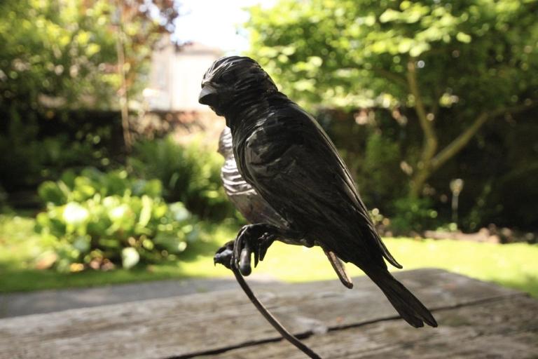 metalgnu_birds_65
