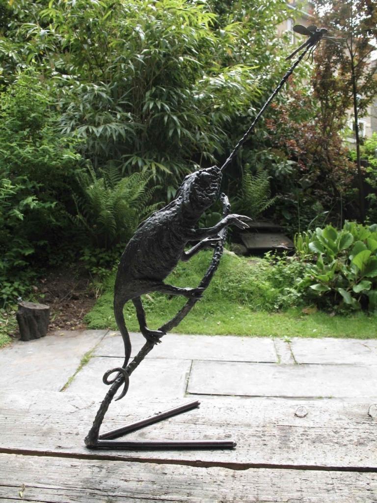 Chameleon for Prof Innes Cuthill.